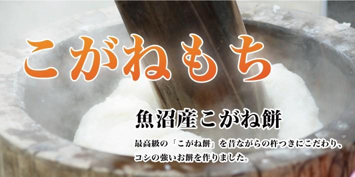 mochi_uonuma01
