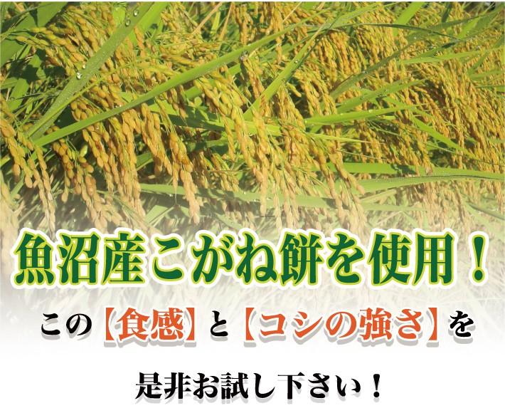 mochi_uonuma02