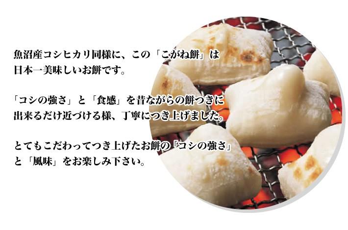 mochi_uonuma03