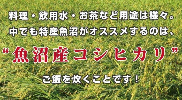 uonumano_mizu04